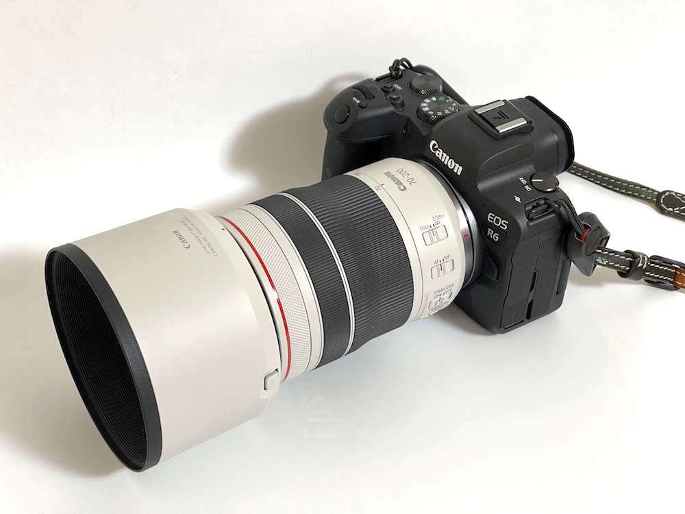R6 + RF70-200mm F4L IS USMその1